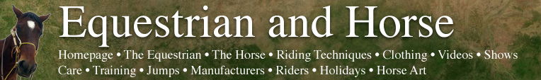 Equestrian and Horse Header